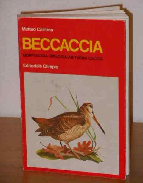 Beccaccia, Matteo Califano, Editoriale Olimpia 1971. - Foto 3